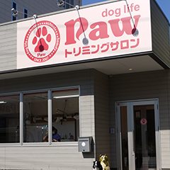 dog.life paw